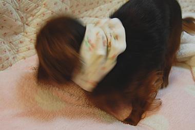 fuku_8.jpg