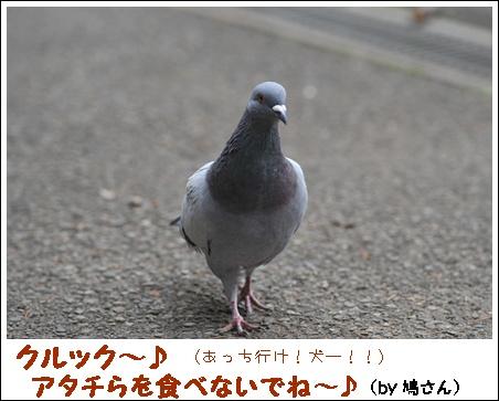 funsuikouen_2.jpg