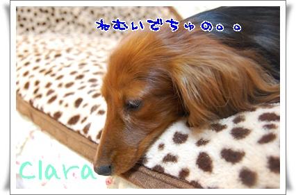 hyakukin_2.jpg