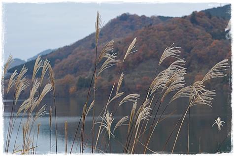 miyagase_105.jpg
