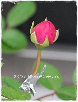 mothersday15.jpg
