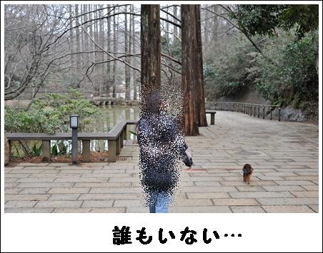 okunoike_1.jpg