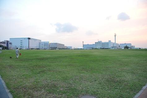 ougijima_6.jpg