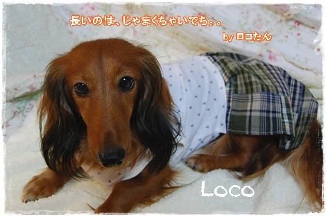 wanfuku201008_15a.jpg