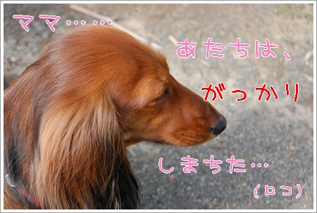 yuubin_6.jpg