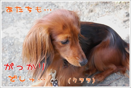 yuubin_7.jpg