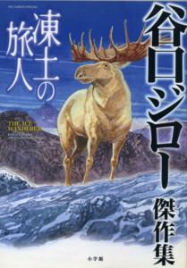 TANIGUCHI-the-ice-wanderer.jpg