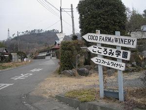 ashikaga-cocofarm1.jpg