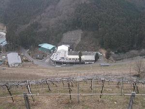 ashikaga-cocofarm35.jpg