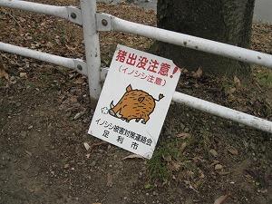 ashikaga-street47.jpg