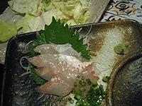 koto-guridocchin5.jpg