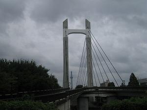 koto-kiba-park2.jpg