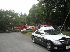 koto-kiba-park20.jpg