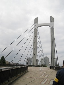 koto-kiba-park21.jpg