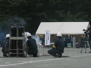 koto-kiba-park9.jpg