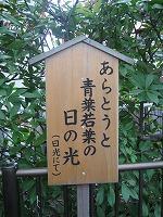 koto-street47.jpg