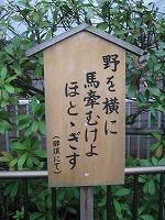 koto-street48.jpg