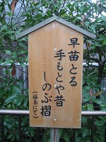 koto-street49.jpg
