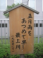 koto-street53.jpg