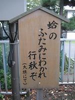 koto-street61.jpg