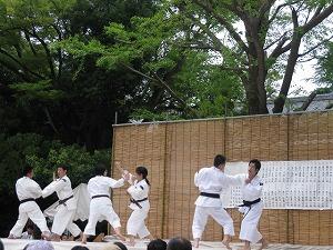 koto-tomiokahachimangu12.jpg