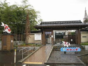 ojiya-nishikikoi1.jpg