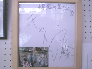 ojiya-nishikikoi17.jpg