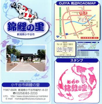 ojiya-nishikikoi7.jpg