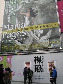 shibuya-umekowa2.jpg