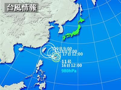 typha11.jpg