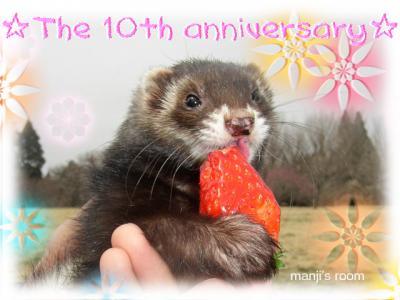 りう生誕10周年