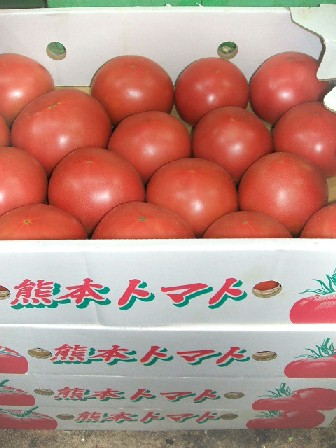 トマト-箱