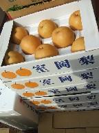新興梨-箱