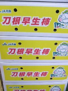 刀根柿-箱