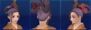 zp01_hair01.jpg