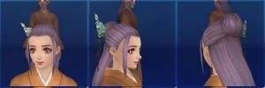zp01_hair02.jpg