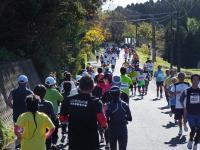BL111204いすみ健康マラソン3-3R9298976