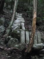BL120226犬鳴山トレラン4-8R9291004