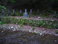 霊仙山4-8RIMG0292E
