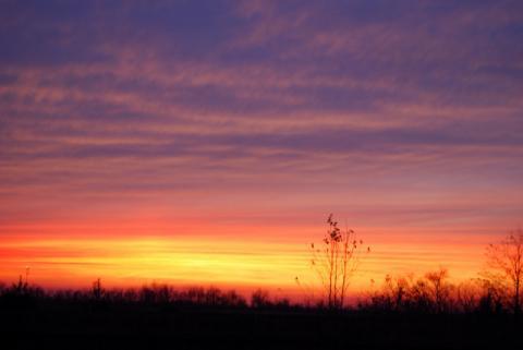 2009年11月10日午後6時