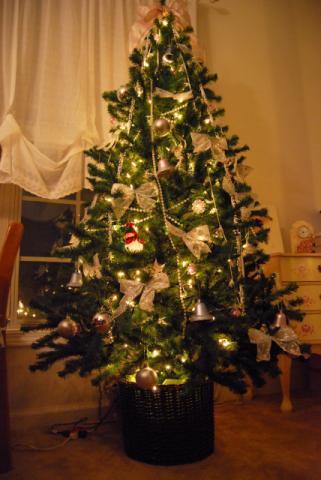 夜のツリーはきらきら♪