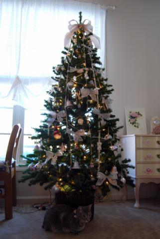 今年もクリスマスツリーを!
