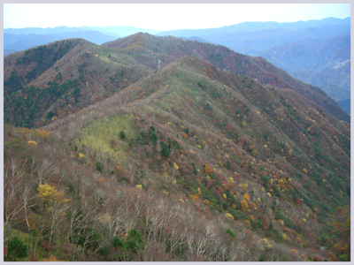 nikkou2009-10-4.jpg