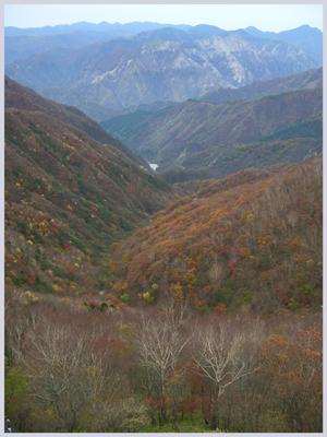nikkou2009-10-5.jpg