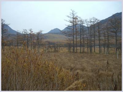 nikkou2009-10-6.jpg