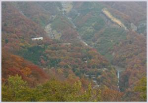 nikkou2009-10-7.jpg