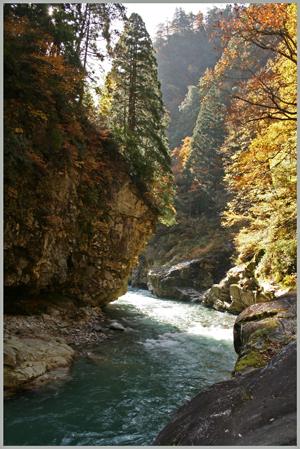 sarutobikyou2009-10-2.jpg