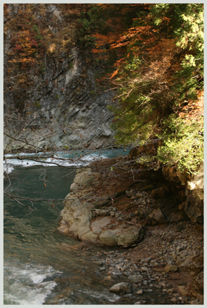 sarutobikyou2009-10-7.jpg