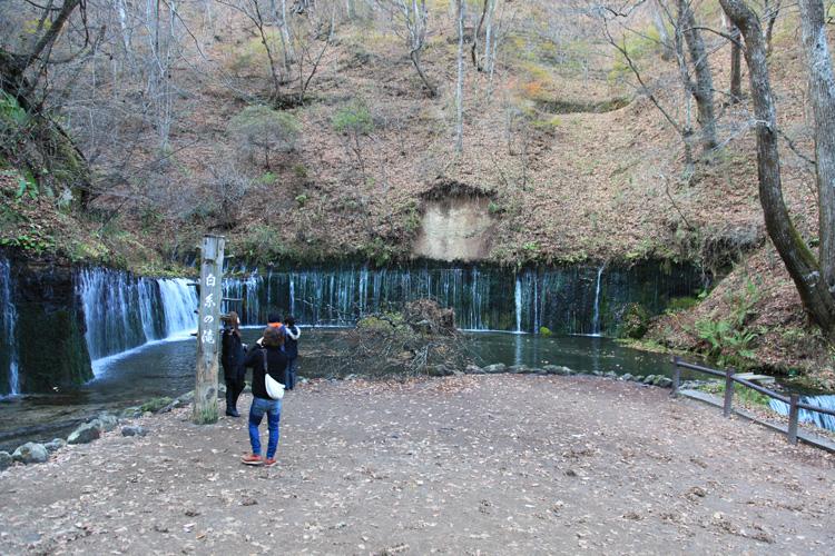 20101108_17.jpg