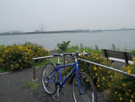 サイクリング6-20-9
